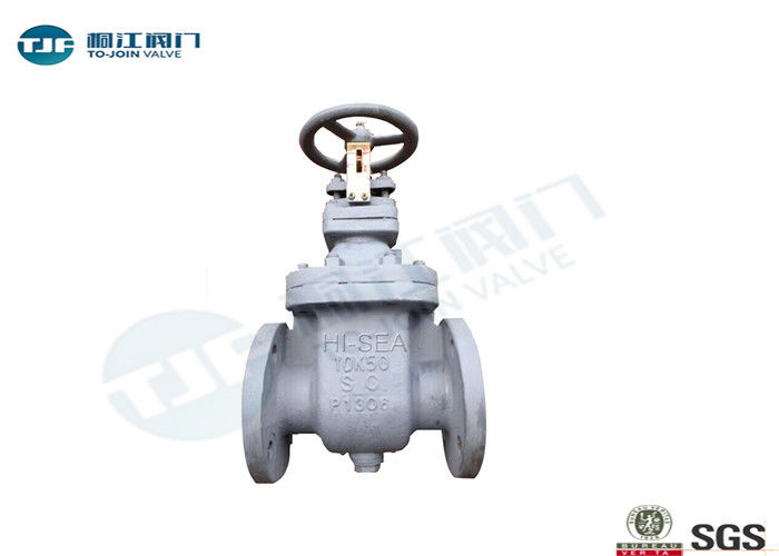 JIS F 7366 Flanged Gate Valve Bronze / Stainless Steel Type Optional supplier